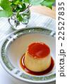 食べ物 デザート スイーツの写真 22527835