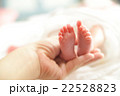 赤ちゃんの足 22528823