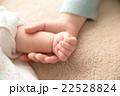 赤ちゃんの手 22528824
