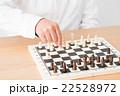 チェス 22528972