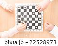チェス 22528973