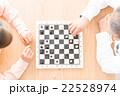 チェス 22528974