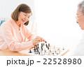 チェス 22528980