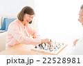 チェス 22528981