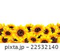 向日葵の夏らしい背景 22532140