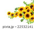 向日葵の夏らしい背景 22532141