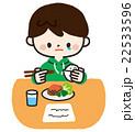 一人で食事する男の子 <手作りごはん> 22533596