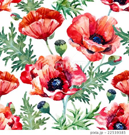 watercolor poppy flower patternのイラスト素材 22539385 pixta