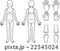 女性皮膚科患部 22545024