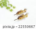 アユの塩焼き 初夏イメージ 22550667
