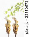 アユの塩焼き 初夏イメージ 22550673