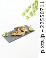 アユの塩焼き 料亭イメージ 22550711