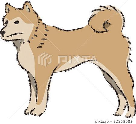 犬日本犬のイラスト素材 22558603 Pixta