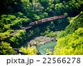 トロッコ列車 嵯峨野観光鉄道 嵯峨野観光線の写真 22566278