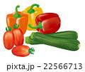 野菜_イタリアン 22566713