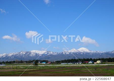 春の田園風景 22568647
