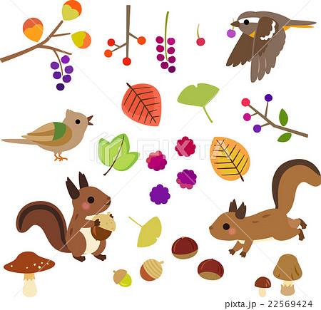 秋の木の実と小動物のイラストセットのイラスト素材 22569424 Pixta