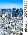 初夏の東京都市風景 22572340