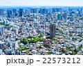 初夏の東京都市風景 22573212