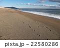砂浜 足跡 恋路ヶ浜 22580286