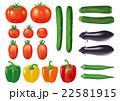 野菜各種_001 22581915