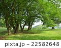 中川八幡山公園 22582648