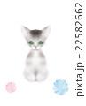 子猫と毛糸玉 22582662