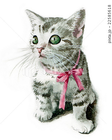 ピンクのリボンの子猫のイラスト素材 22585618 Pixta