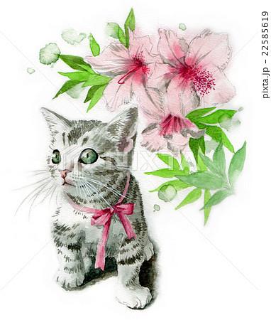 ピンクのリボンの子猫とツツジの花 22585619