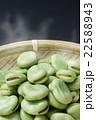 茹でたての空豆3 22588943