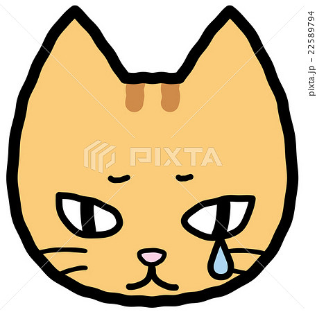 落ち込む猫 22589794