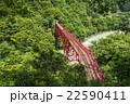 黒部峡谷鉄道 新緑の黒部峡谷 赤い鉄橋 22590411