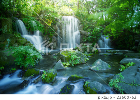 東京の滝 22600762