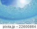 モルディブ 海中 海水魚の写真 22600864