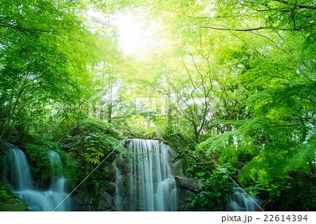 東京の滝 22614394