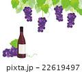 赤ワインとぶどう イラスト 22619497