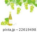白ワインとぶどう イラスト 22619498