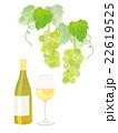 白ワインとぶどう イラスト 22619525