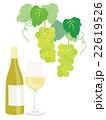 白ワインとぶどう イラスト 22619526