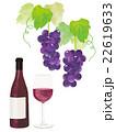 ぶどうと赤ワイン 22619633