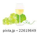 白ワインとぶどう イラスト 22619649