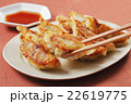 焼き餃子 22619775