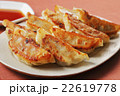 焼き餃子 22619778