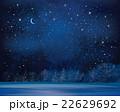 Vector winter background. 22629692