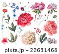 ホワイト お花 フラワーのイラスト 22631468