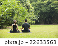 Chinese man practicing Tai Chi outdoors. 22633563