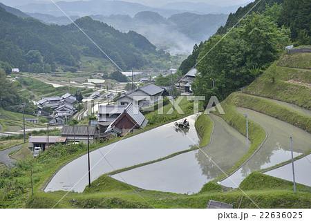 里山の田園風景/奈良県 明日香村 22636025