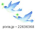 幸せを運ぶ青い鳥 22636368