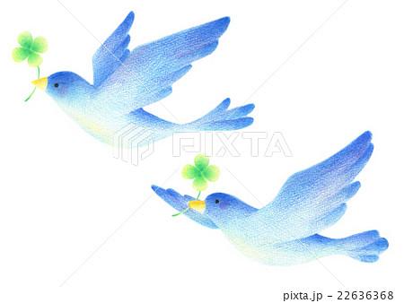 幸せを運ぶ青い鳥のイラスト素材 22636368 Pixta