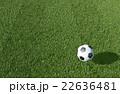 サッカー ボール 芝生のイラスト 22636481